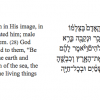 Genesis excerpt